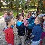 Faunapark říjen (2)