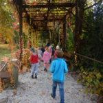 Faunapark říjen (6)