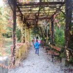Faunapark říjen (8)